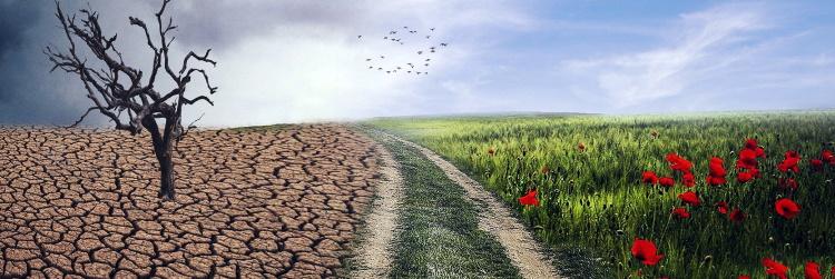 Nepřáli jsme si vždy změnu světa k lepšímu? Teď ji máme, jen vypadá jinak, než jsme chtěli